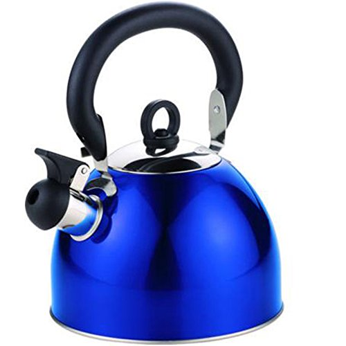 Edelstahl Camping Flötenkessel mit abnehmbarem Deckel 2,5 Liter in Blau - Wasserkessel Wasserkocher Ofenkessel Teekessel