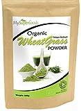 Polvo Orgánico de Agropiro (500 gramos) / MySuperFoods/Certificado como producto orgánico/Fuente de Vitamina E, Calcio, Hierro, Zinc y fibra/Poderoso antioxidante/el Polvo de mayor calidad disponible