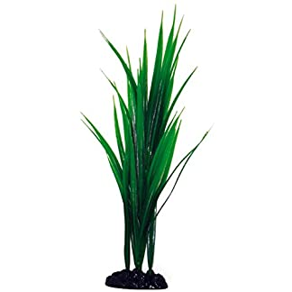 Wave Bamboo Plant Classic, Large 7