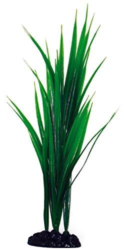 wave-bambou-plante-classique-pour-aquariophilie-taille-l