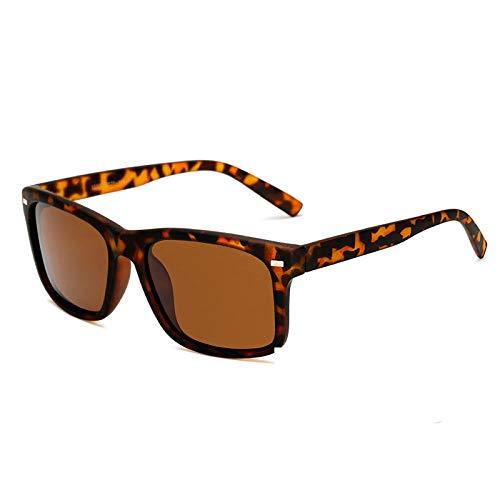 MOLUO Sonnenbrille Männer Polarisierte Brille Autofahrer Nachtsichtbrille Blendschutz Polarisator Sonnenbrille Polarisierte Fahrsonnenbrille @ D
