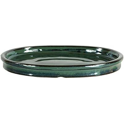 Bonsai Untersetzer 20x15.5x2cm Grün Oval von Bonsaischule Wenddorf - Du und dein Garten