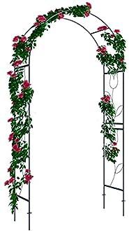 Rosenbogen Bild