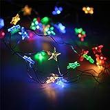 TAOtTAO Lamp Lamp string string Stern-Licht-gemütliche Schnur-feenhafte Lichter für Schlafzimmer-Partei mit 30 LED-Perlen (Mehrfarbig)