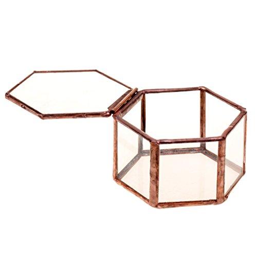 (P Prettyia 2pcs Geometrischer Terrarium Box Pflanzgefäß Dekoration für Sukkulente und Kerzen, aus Glas und Metall)