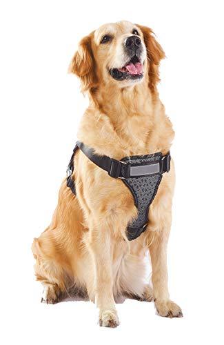 Alimao® Arnés para Perros de Trabajo Pesado