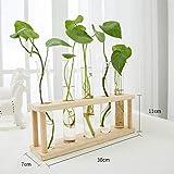 WJSWH Pflanze Mini Flower Stand Schreibtischdekoration Glasdekoration Kleine fleischige mehrschichtige Holzregal (Größe: 29x11x16cm)