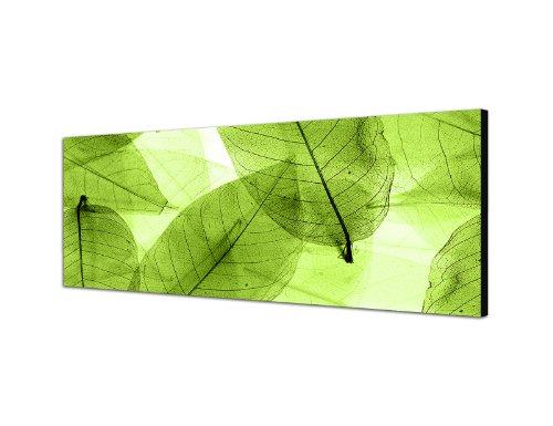 Keilrahmenbild Wandbild 150x50cm Blätter Silhouette Hintergrund grün