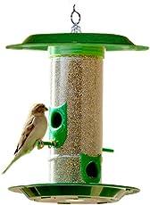 Amijivdaya Bird Feeder with Hut (Medium, Green)