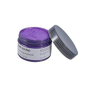 Frcolor Crema Tinte de Pelo Cera de Pelo Profesional para Hombres Mujeres (Púrpura)
