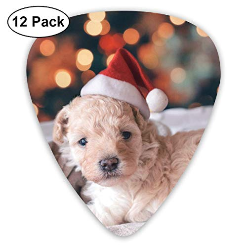Clear Christmas Long-Coated White Puppy Wearing Santa Hat Guitar Picks - 12 pack,0.46/0.73/0.96 Mm Guitar Guy White Hat