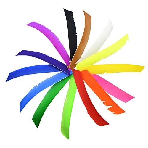 SHARROW 50pcs Pfeilfedern Naturfedern Volle Länge Truthahnfedern Spiralwickel Bogenfedern Fletching Federn für Pfeile (Weiß)