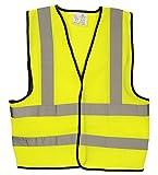 AA Car Essentials High Visibility Vest