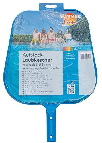 Summer Summer Fun