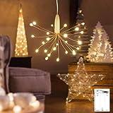 Guirlande lumineuse LED, Litogo Mini Guirlande LED a Pile 30CM 25 LEDs Intérieur et Extérieur Décoration Lumière pour Chambre