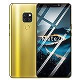 Hukz Acht Kerne 6,1 Zoll 4G verdoppeln SIM Kamera Smartphone Androides 8.1 Handy,Smartphone Mit Vier Kameras (Gold)