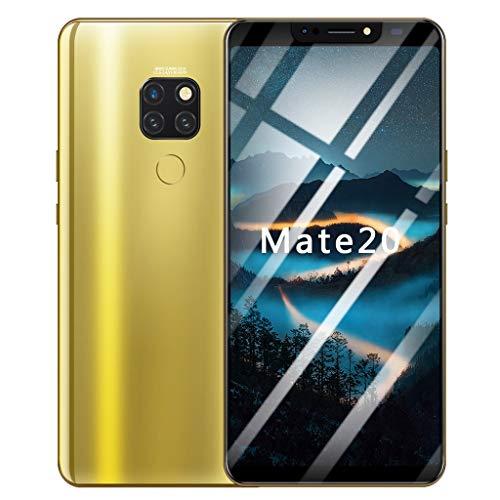 Oasics Smart Cellphone ,Acht Kerne 6.1 Zoll Doppel-HDCamera Dual-HD-Kamera-Smartphone Smartphone Android 8.1 IPS-Bildschirm 16GB WiFi Bluetooth GPS 4G VOLLBILD-Anruf (Gold)