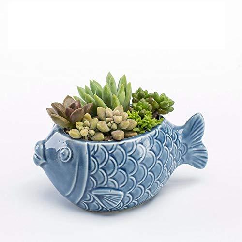 LUOSHEN Moderner Übertopf Keramik Blumentopf nach Hause fleischigen Blumentopf Kombination niedlich Bunte Töpfe, Blaue fette Fische, 12 * 6 cm -