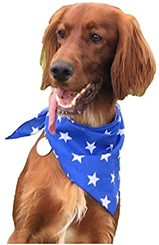 Dog Bandana - Blue with White Star Print Dog Bandana