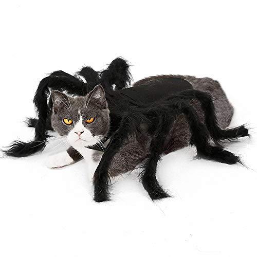 FZ FUTURE Halloween Kostüm für Katze Hund, Halloween Lustiges Haustier Kostüm, Simulation Plüsch Spinne kleiden, für Halloween Partys Bösewicht Terror Tiere,M