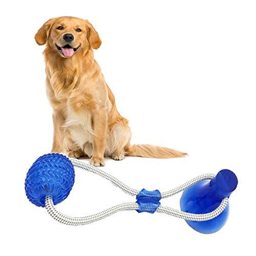 Nincee Juguete interactivo perros bola masticar Juguete