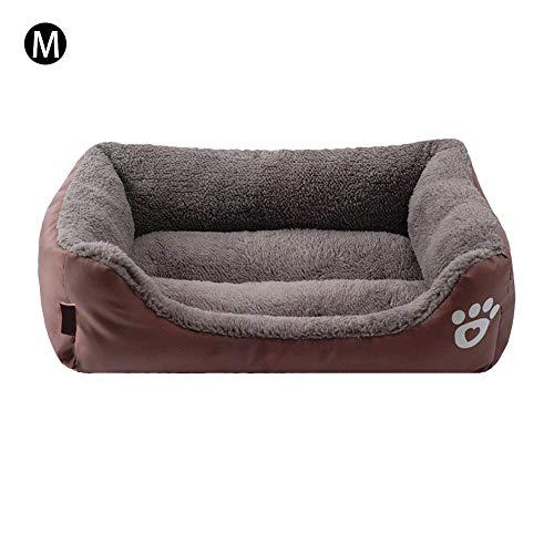 PROKTH   Camas para Mascotas pequeñas, Medianas y Grandes - Cama para...