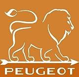Peugeot Set PARIS Antique Pfeffermühle + Salzmühle 18 cm - 3