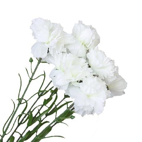 6 x Artificial Flowers Carnation Plants for Wedding Bouquet Decoration Table Arrangement (White)