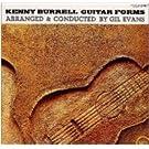 Guitar Forms (24bit)