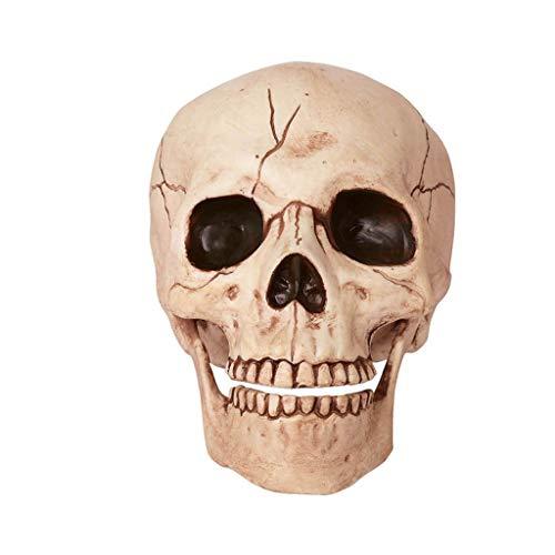 ion Kreative Spielzeug Horror Lustige Parodie Skeleton Schädel Knochen ()