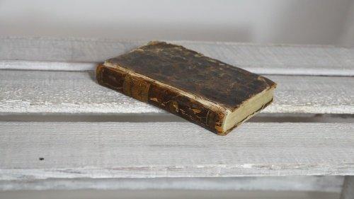 Wohnliebhaber Schiller Geschichte Sämtliche Werke achtes Bändchen Buch Antik Antiquität Alt