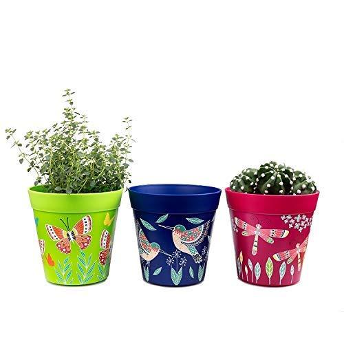 Pentole, set di 3 pentole colorate, blu e rosa verde, erbe aromatiche per uso interno/esterno
