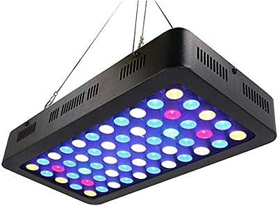 Famyfamy LED Aquarium Eclairage 165 Eau Dimmable Complet Spectrum pour Corail Reef Croissance Poisson Garde Réservoir Prise Britannique