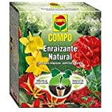 Compo 2226602011 - Enraizante natural de 50 gr