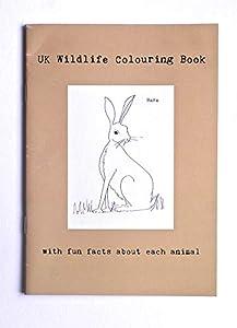 Sarah Lovell Art UKWLC-01 Libro para Colorear