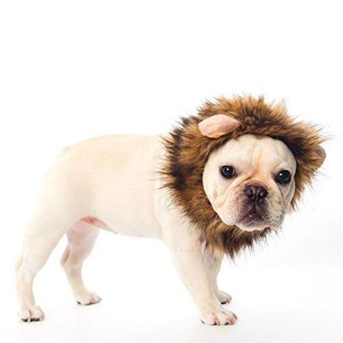 Haustier Hund Katze Löwe Mähne Perücke mit kleinen Ohren Halloween Dress Up langlebig und praktisch ()