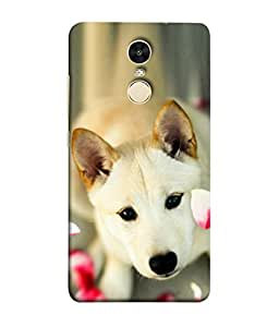 PrintVisa Sweet Dog 3D Hard Polycarbonate Designer Back Case Cover for Xiaomi Redmi Note 4 (2017 Edition)