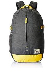 Gear 22 Ltrs Grey Casual Backpack (BKPCMPSLB0412)
