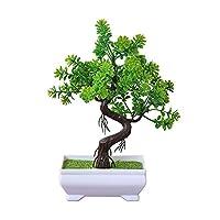 BIGBOBA Simulation Grass Ball Large Bonsai Potted Plants, Evergreen Tree Olive Tree Home Bonsai Ornaments, Living Room Balcony Decoration, 26cm*16cm, Plastic Flower (Light Green)