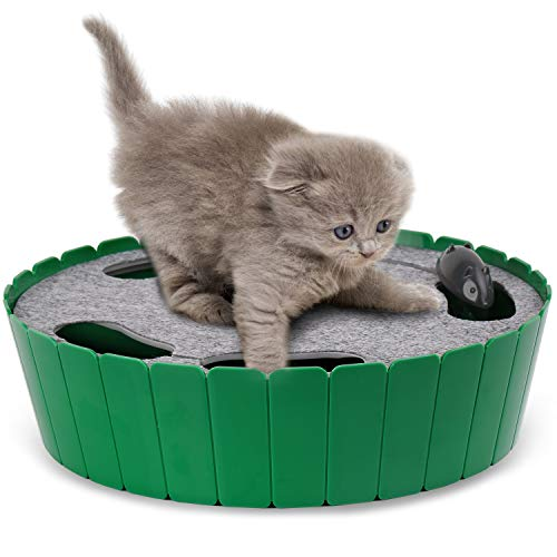 Pawaboo Haustier Spielzeug - Verstecken und Suchen Elektronische Maus Jagd interaktive Katze Spielzeug, Grün