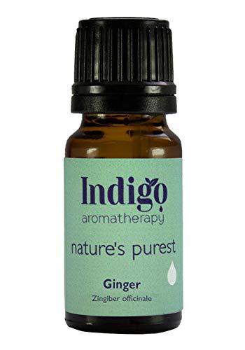 Indigo Herbs Ingwer ätherisches öl 10ml - 100% reines (Wasserdampfdestillation) -