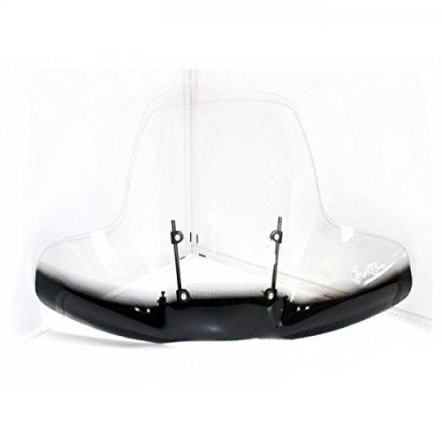 Wohnstyle24 Universelles Windschutzschild 101 Windschild für Quad ATV Schutzscheibe Windschutz transparent