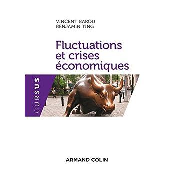Fluctuations et crises économiques