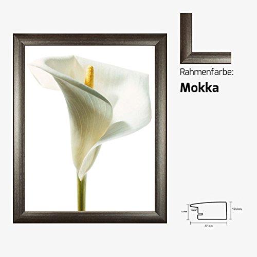 kunstdruck-prisma-lily-in-bloom-i-weisse-lilie-blume-blute-40-x-50-cm-mit-mdf-bilderrahmen-acrylglas
