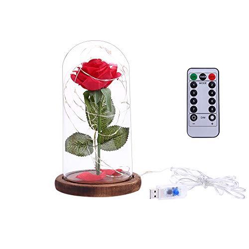 ose Blumen Die Schöne und das Biest Rose Kit LED String Licht 8 Modi mit Glasabdeckung Fernbedienung Party Hochzeit Dekor Geburtstagsgeschenk ()