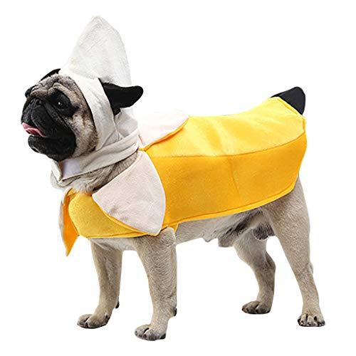 Kostüm Hunde Banane - Blaue Halloween Kostüm Banane Lustige Klamotten,Haustierkleidung,Hoodie Pullover Sweatshirt, warme Katze Hund kleidet Weste,Sweatshirt Hundekleidung (XL, Gelb)