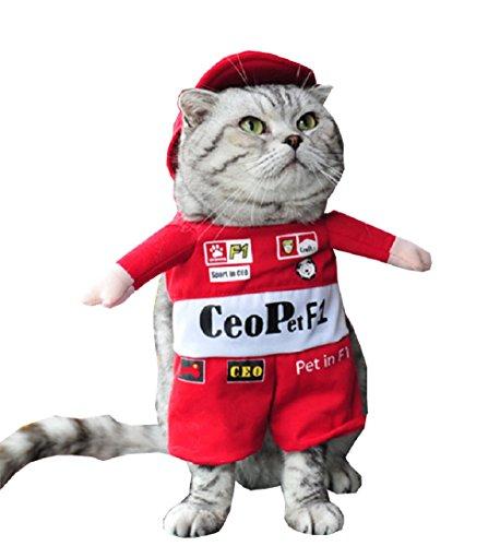 te Kostüm - Verkleidung-Gang - Fahrer - Formel 1 - Läufer - Ricciardo - Perez - Verstappen - Schumacker - Katze (M) ()
