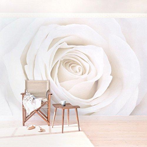 Vliestapete - Top Rosen Tapeten - 6 hochwertige Motive zur Auswahl - Fototapete Breit Vlies Tapete Wandtapete XXL Wandbild Foto 3D Fototapete Wohnzimmer Schlafzimmer Kinderzimmer, Größe HxB: 190cm x 288cm; Motiv: Pretty White Rose