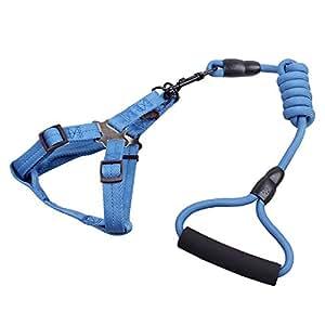 Eizur Nylon Cane Pettorina Guinzaglio Set con espanso Maniglia Regolabile Durevole No-Pull Sicurezza Catena Cablaggio per Animali Cani Gatto Formazione passeggio Blu scuro--Taglia M