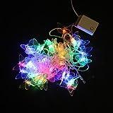 ZJ 5 M 40-LED bunte Schmetterling String Weihnachtsbeleuchtung Hochzeit Partei Weihnachtsbeleuchtung (AC220V)